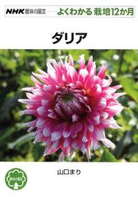 Shumien_dahlia_100725a